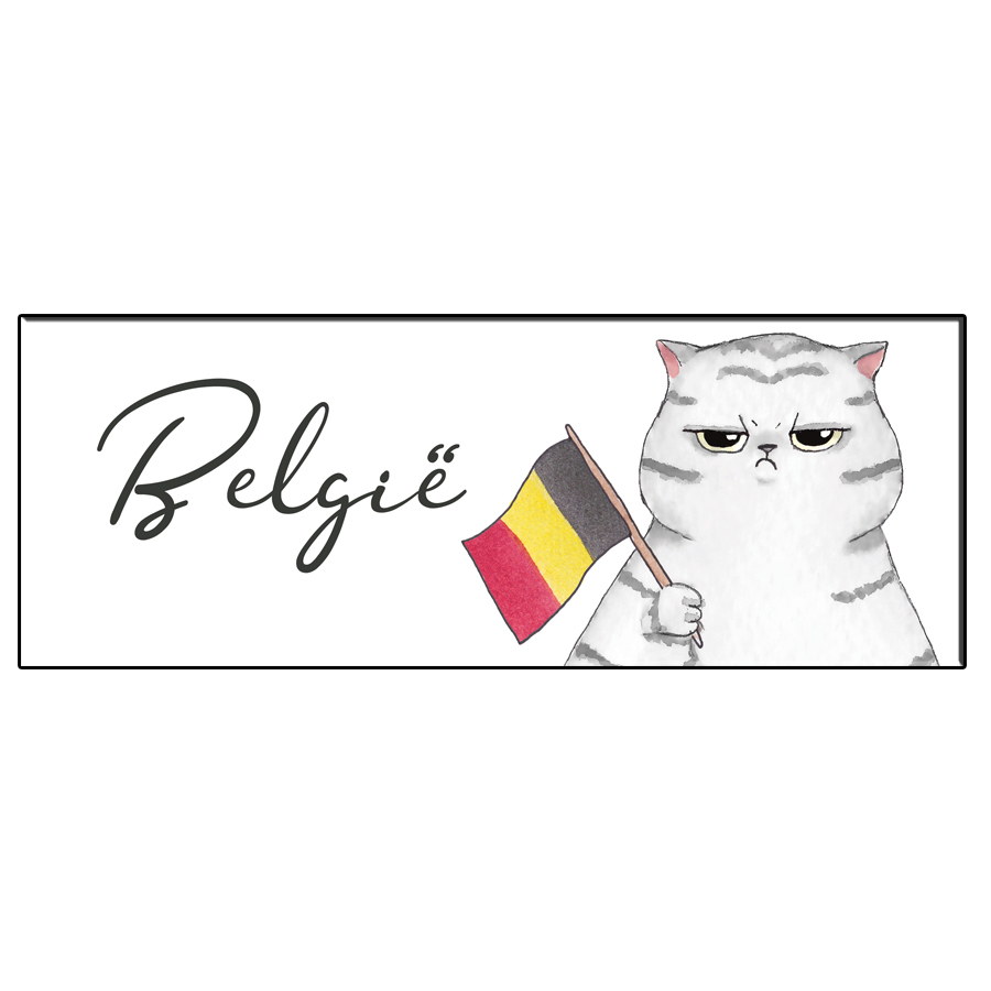 FUN CAT BELGIUM BOOKMARK
