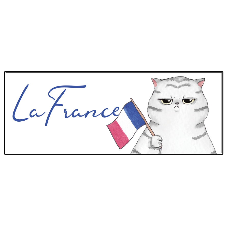 FUN CAT FRANCE BOOKMARK
