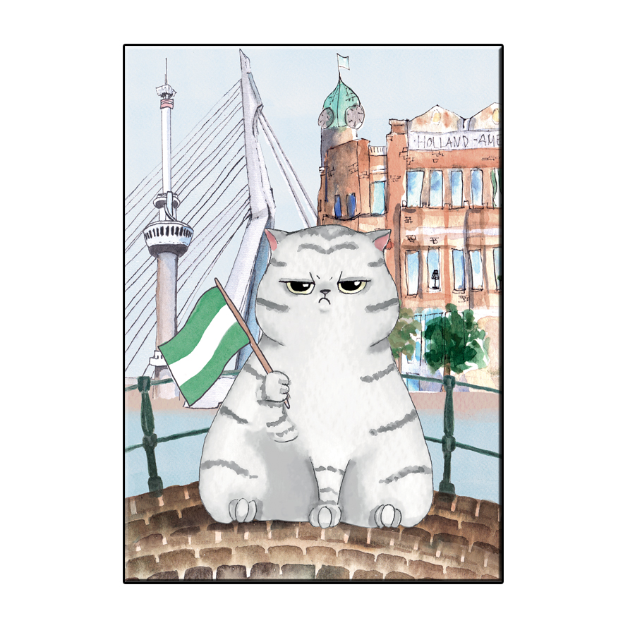 A6 FUN CAT IN ROTTERDAM CITY CARD