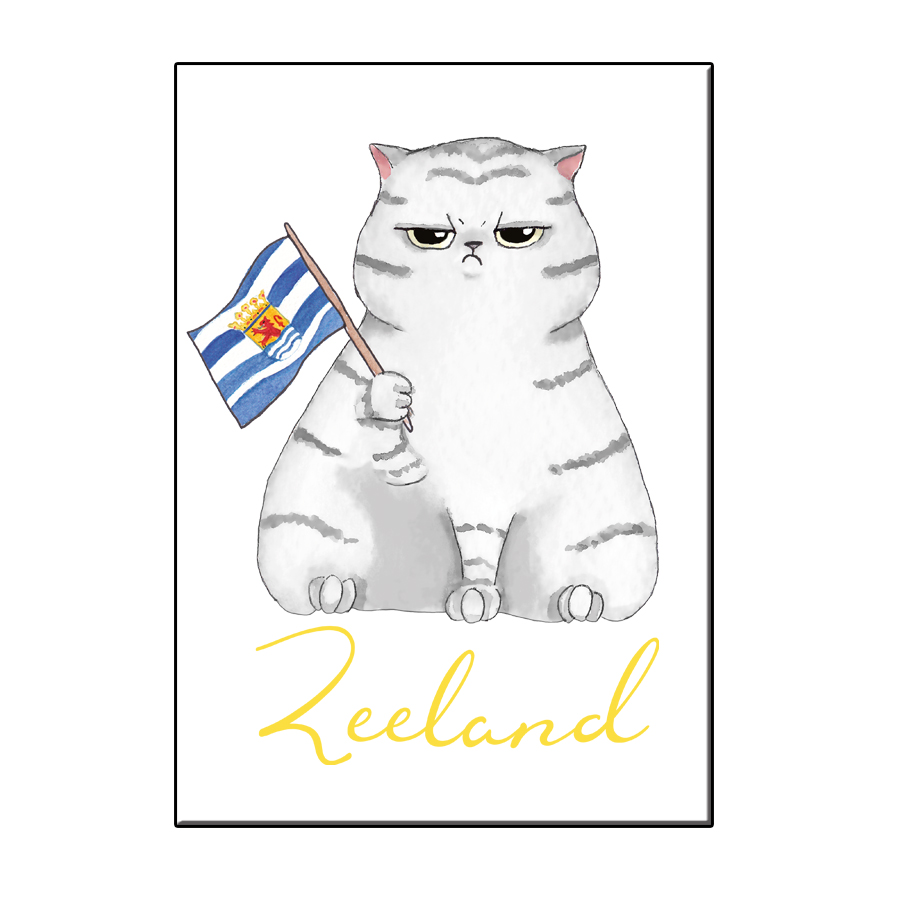 A6 FUN CAT IN ZEELAND CARD