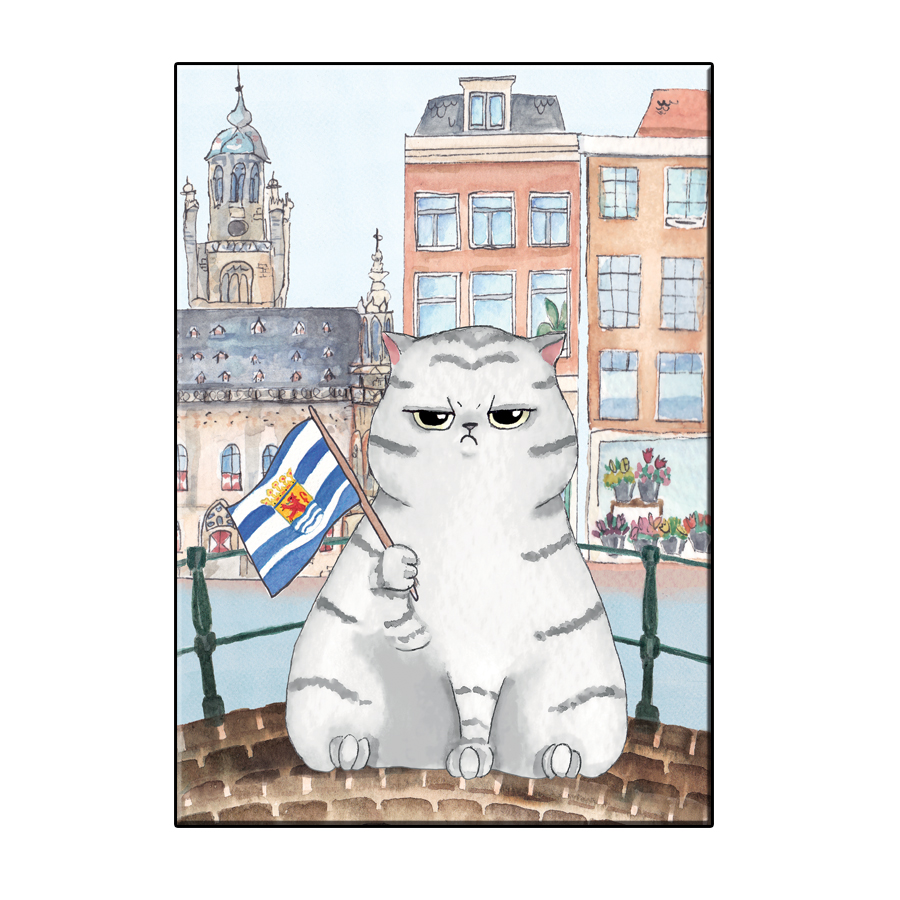A6 FUN CAT IN MIDDELBURG CITY CARD