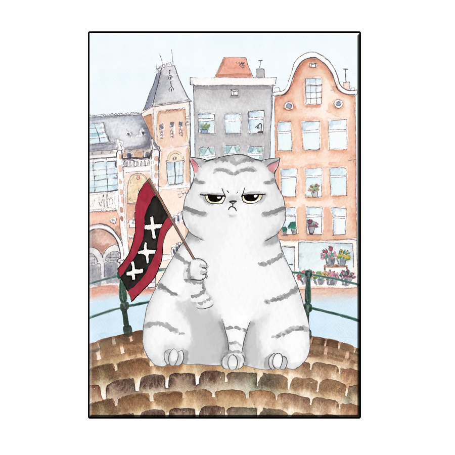 A6 FUN CAT IN AMSTERDAM CITY CARD