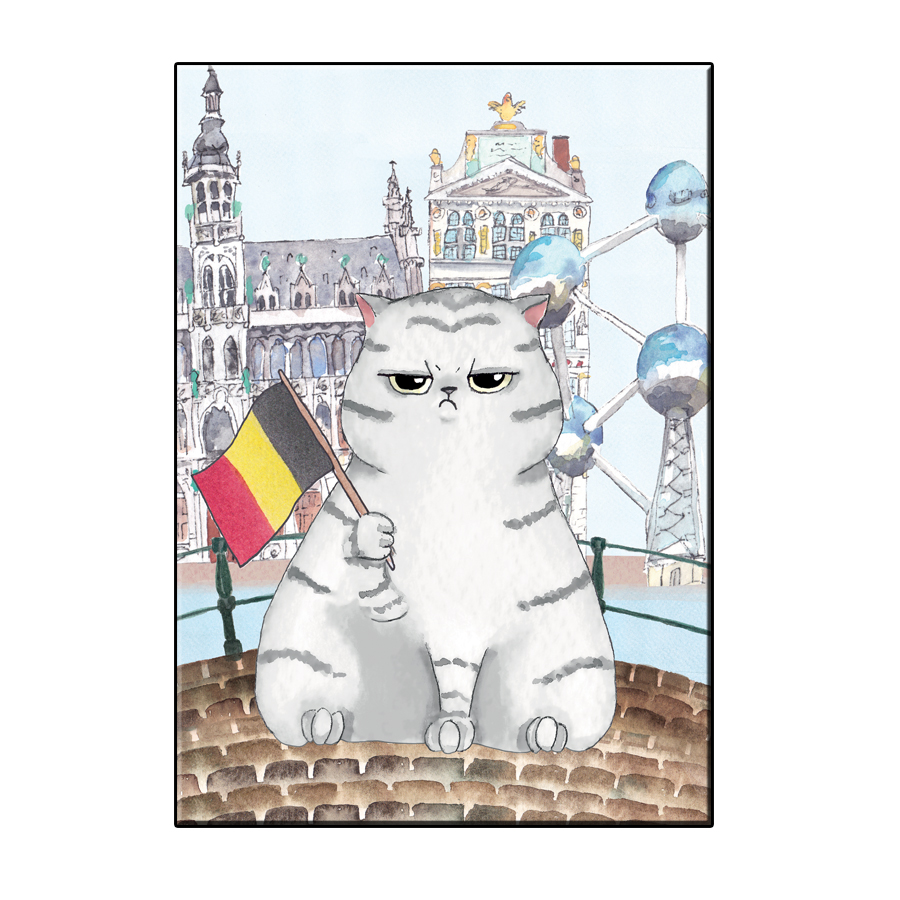 A6 FUN CAT IN BRUSSELS CITY CARD