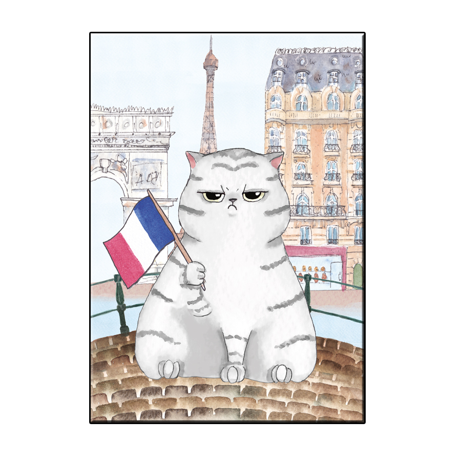A6 FUN CAT IN PARIS CITY CARD