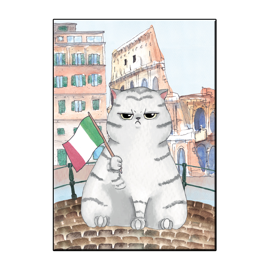 A6 FUN CAT IN ROME CITY CARD